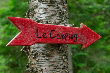 Diverse people enjoy spiritual gathering A closeup view of a red arrow fixed to the trunk of a silver birch tree, with French writing saying camping, directing people towards a woodland campsite.