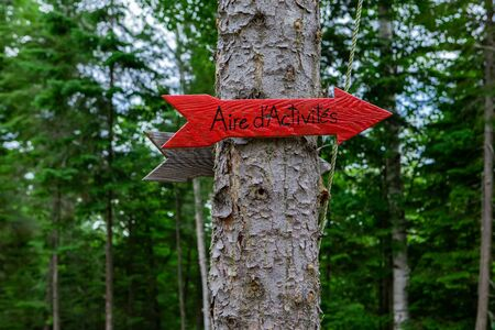 Diverse people enjoy spiritual gathering A small red arrow French sign, saying activity area, is viewed up close, fixed to a tree in woods during a shamanic retreat in nature. Stock fotó
