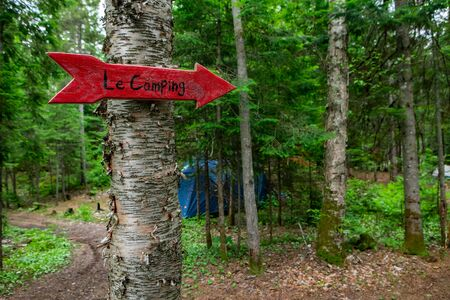 Diverse people enjoy spiritual gathering A small red arrow is seen fixed to a tree in dense woodland, giving directions to a campsite retreat, with copy space on the right.