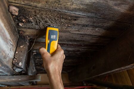 Indoor damp & air quality (IAQ) testing. A close-up view of a home inspector at work in a residential basement, assessing signs of structural defects such as wood rot and dampness, with copy space. Stok Fotoğraf