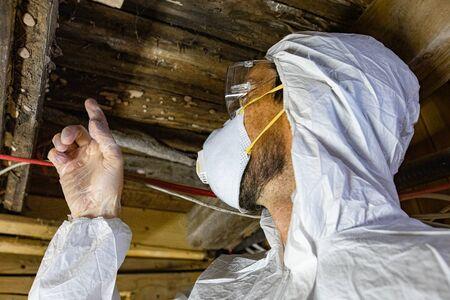 Prüfung der Feuchtigkeit und Luftqualität (IAQ) in Innenräumen. Eine Nahaufnahme eines Innenumweltinspektors, der Schutzausrüstung in einem Keller mit starkem Schimmel und Feuchtigkeit trägt, unter verrottenden Holzdielen. Standard-Bild