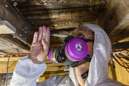 Indoor damp & air quality (IAQ) testing. A closeup view on the head of a man wearing a protective boiler suit and respirator, inspecting wooden structural elements in a residential building. Stok Fotoğraf