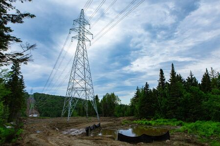 Electricity pylons in natural landscape. A low angle view of tall transmission towers supporting overhead power lines in a dense forest, man made clearing for industrial structures with copy space. Imagens
