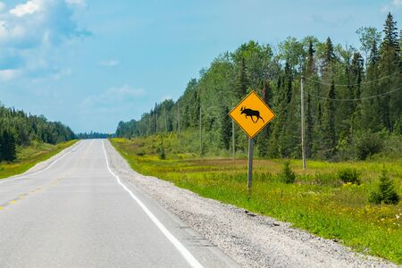 empty road view, with a warning for moose crossing the road sign with transmission towers and pine trees forest on the roadside Reklamní fotografie