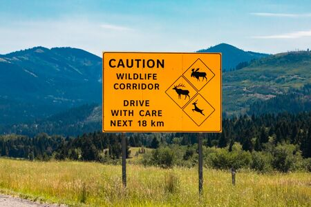 Big yellow warning road Sign, caution wildlife corridor drive with care next 18 km, with deer and moose and elk crossing symbols, Canadian roadside