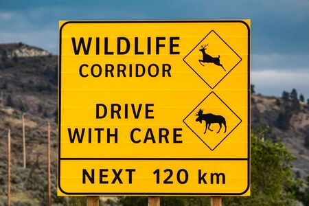 Big yellow warning road Sign, closes up view, wildlife corridor, drive with care, the next 120 km with deer and moose symbols, Canadian rural roadside