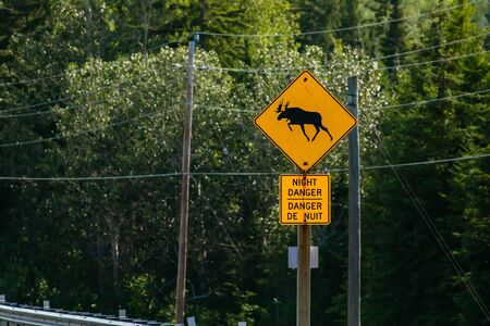 a warning for moose crossing the road, night danger bilingual signs, with power Lines and forest trees in the background