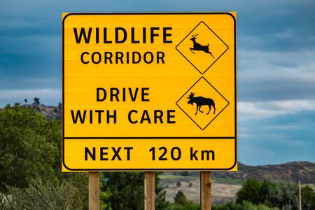 Big yellow warning road Sign, wildlife corridor, drive with care, the next 120 km. with deer and moose symbols, on the Canadian rural roadside