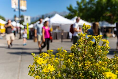 A shallow depth of field captures blurry people shopping during a local fair for art and food, white awnings are seen in background with copy space Foto de archivo
