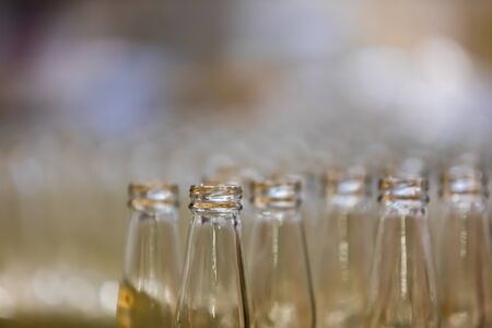 a lot of new white glass empty beer bottles top, selective focus close up view with copy space, conveyor belt craft brewery factory microbrewery