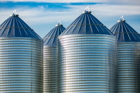Modern and clean bulk grain storage silos are seen on a large farm in Alberta, Canada. Stockpile of grain, cereal, wheat, maize, rice in metal towers