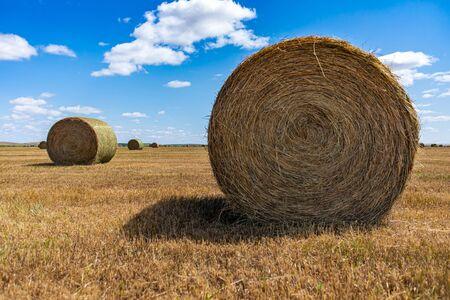 Gran fardo redondo de heno en el campo con otros fardos más distantes y un cielo azul brillante de fondo. Entorno rural, humor de verano.
