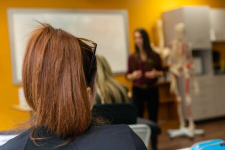 A close up view in the back of a student head, woman with light brown hair watches blurry teacher give anatomy lesson with skeleton model, with copy space