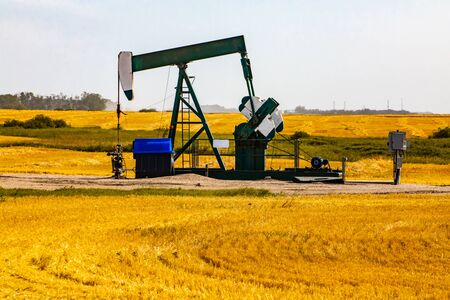 An aging pumpjack is seen in a golden grain field. Crude oil and finite earth resource mining. Fossil fuel production industry of Alberta, Canada Banque d'images