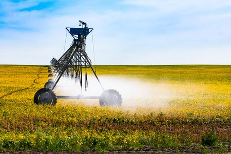 Fine water mist is seen coming from a portable pivot irrigation system on wheels, crop cultivation and management in Alberta, Canada. With copy space