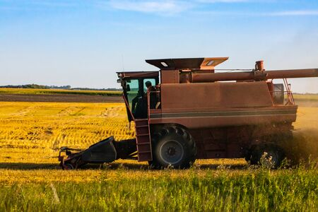 A side profile view of a large combine harvester farm machine at work in a golden crop field, operated with farmer in cabin and copy space to left