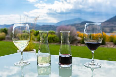 small decanters and glasses filled with red and white wines on a glass table, wine tasting stemware against a garden grass mountain view background