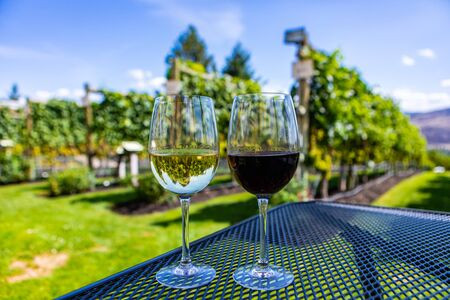 wine glasses close up selective focus, modern table sitting on winery vineyard grapevines view background, couple wines outdoor tasting travel concept