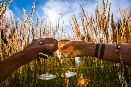 happy couple tasting, drinking and toasting red and white wine glasses against plants and the sun in the sky, summer spring harvest concepts background