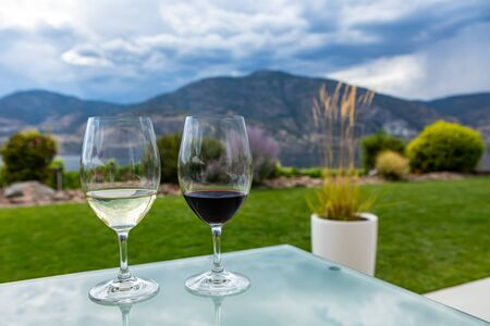 pair of wine glasses filled with red and white wines, selective focus and close up view against a beautiful landscape of grass and plants background