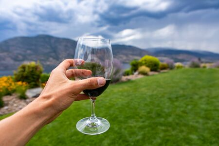Man hand holding a glass of red wine selective focus close up view against yard grass background copy space, Okanagan Valley, British Columbia, Canada