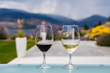 pair of glasses on glass table close up, selective focus view, two wine glasses filled of dark red and golden white wines, blurred nature background