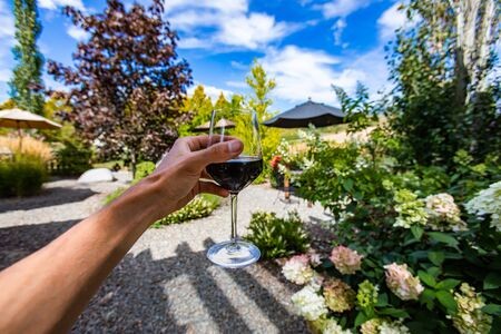 a glass of red wine drinking and tasting outdoor in winery courtyard, hand close up and selective focus against beautiful plants view during sunny day Stock fotó