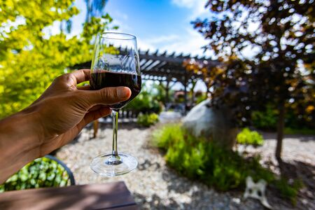 hand holding a glass of red wine selective focus view, outdoor wine tasting winery concept background, beautiful sunny day Stock fotó