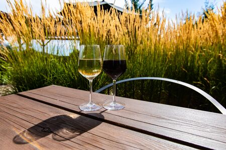 pair of different wine glasses, white wine glass and red wine glass on wooden table with pampas grass plants in the background during summer sunny day Stock fotó