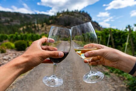 hands holding and cheering a couple of red and white wine glasses selective focus close up view against, path road between vineyards background