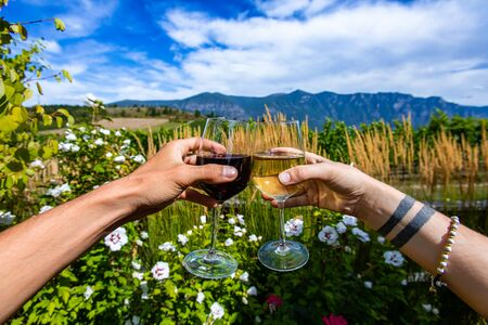 woman and man couple hands holding and toasting white and red wine glasses, drinking tasting wines against flowers plants, Okanagan Valley nature