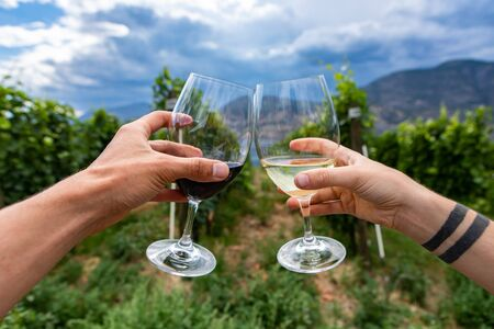 hands holding wines glasses and cheering, outdoor wine drinking and tasting, Canadian winery tour visit, vineyards in Okanagan lake background