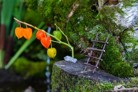 A selective focus close up macro shot of a small handmade set of ladders on a tree stump with colorful chinese lantern plant in background, miniature scene