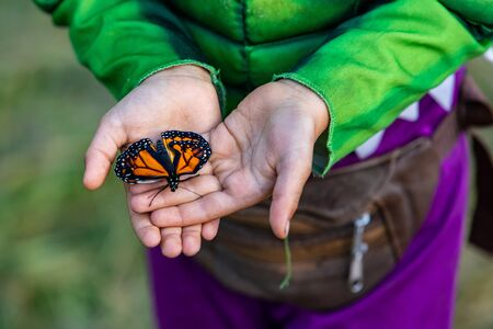 A close up high angle shot of a calm Monarch Butterfly resting on the palm of the hands of a caucasian child, connection with nature, copy space to right