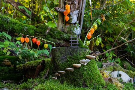 A cute and small whimsical miniature scene is seen in a forest during a festival celebrating earth, mushrooms growing from tree create stepping stones