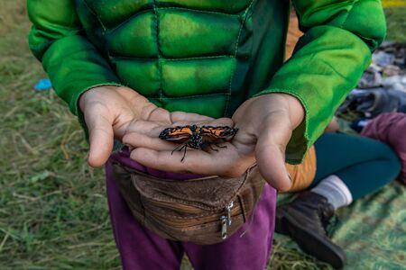 A closeup shot of a beautiful and peaceful Monarch Butterfly in the hands of a young boy, at a festival celebrating earth and culture in nature Stock Photo