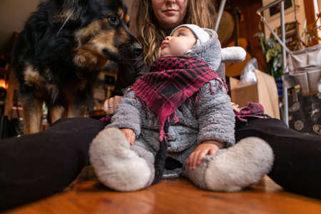 Little toddler baby boy in winter clothing sitting on wooden floor at home with mother looking at pet dog with curiosity and excitement