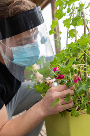 Close up, side view of a man trying to smell a flower through several layers of safety covid protections, included a face mask and a plastic visor.