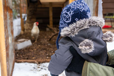 View from behind of mom holding a baby boy dressed in winter suit with furry hood looking curious at a chicken coop with white hens in the background.