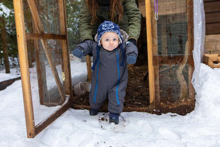 Young mom helping her baby to stand up and walk in the snow during the exploration of a chicken coop in a winter day. Babys first discoveries.