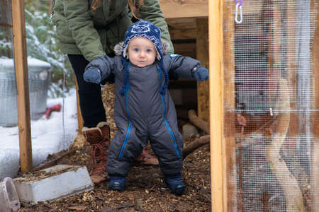 Young mom helping her baby to stand up and move some steps during the exploration of a chicken coop in the snow. Babys first discoveries.