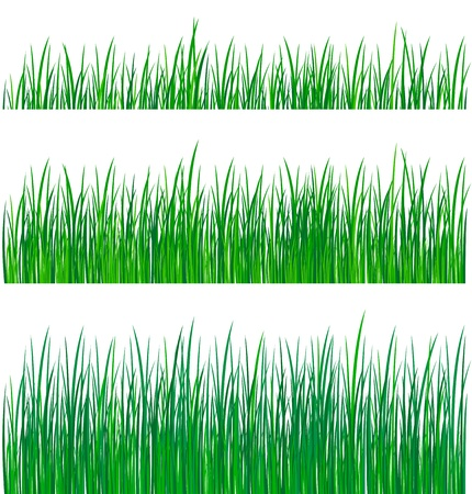 separable: green grass collection Illustration