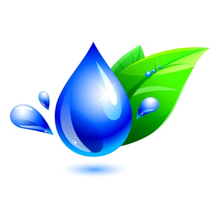 water drop and green leaf 일러스트