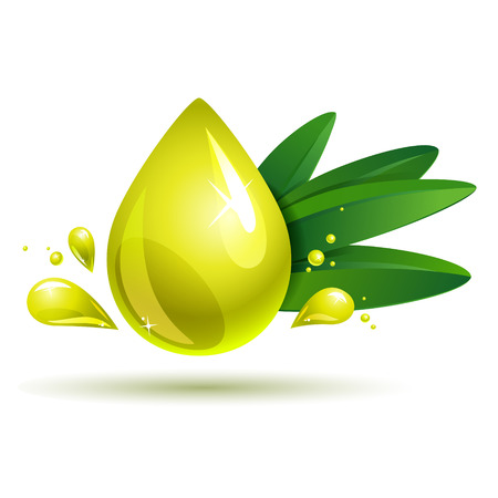 oil drop with olive branch  eps10 Vector