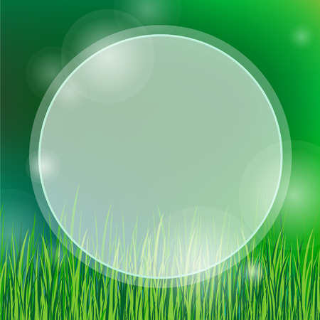 copy spase: summer background with green grass