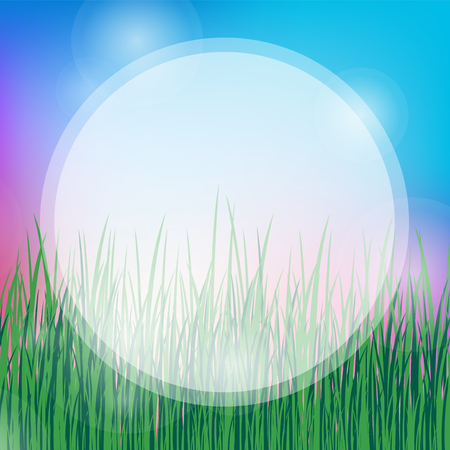 summer background with blue sky and green grass