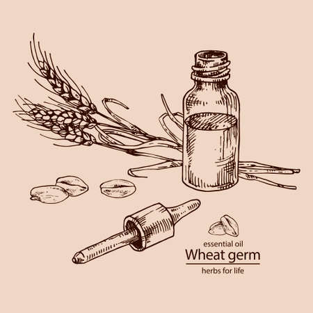 Opened wheat germ glass bottle dropper for cosmetics, medicine, treating, aromatherapy, package design healthcare Vettoriali