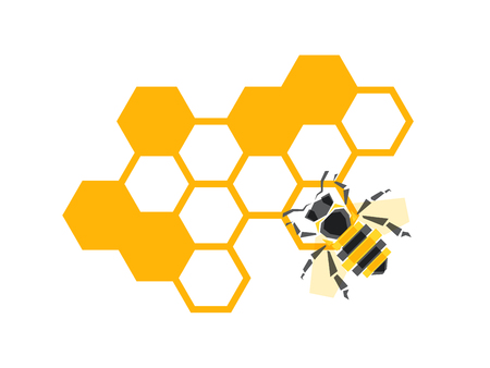 Vector honeycombs with bee background natural design elements isolated