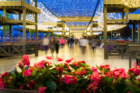 tatarstan: a bed of flowers in a pedestrian street decorated with beautiful lights