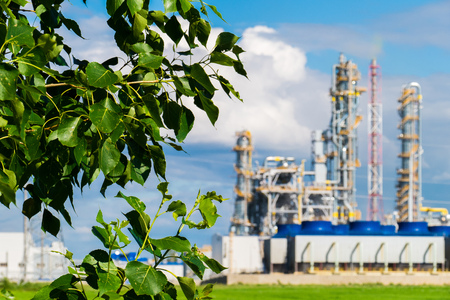 tatarstan: plant for the production of fertilizers on the background of leaves of a tree